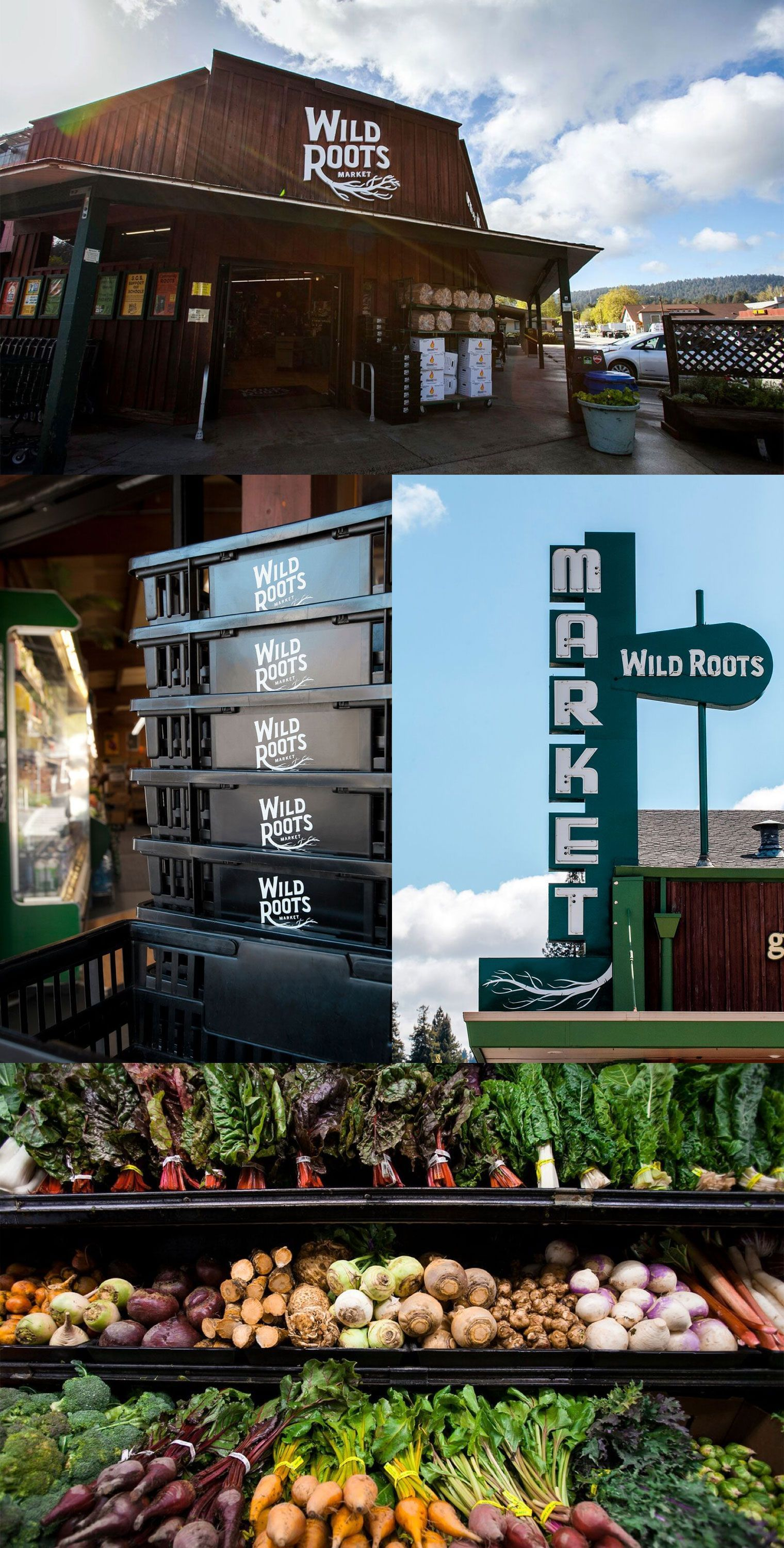 Wild Roots Signage