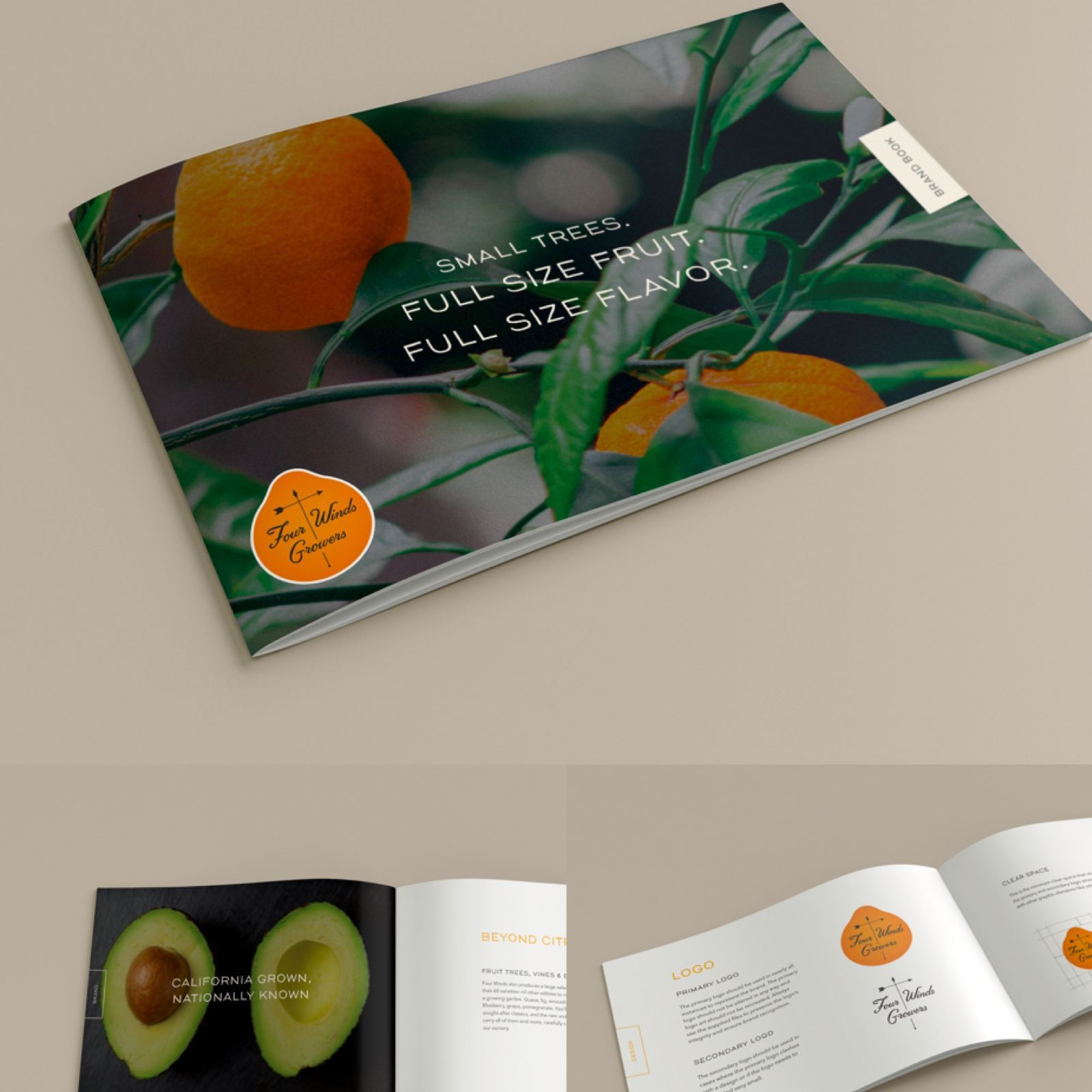 Four Winds Brand Book