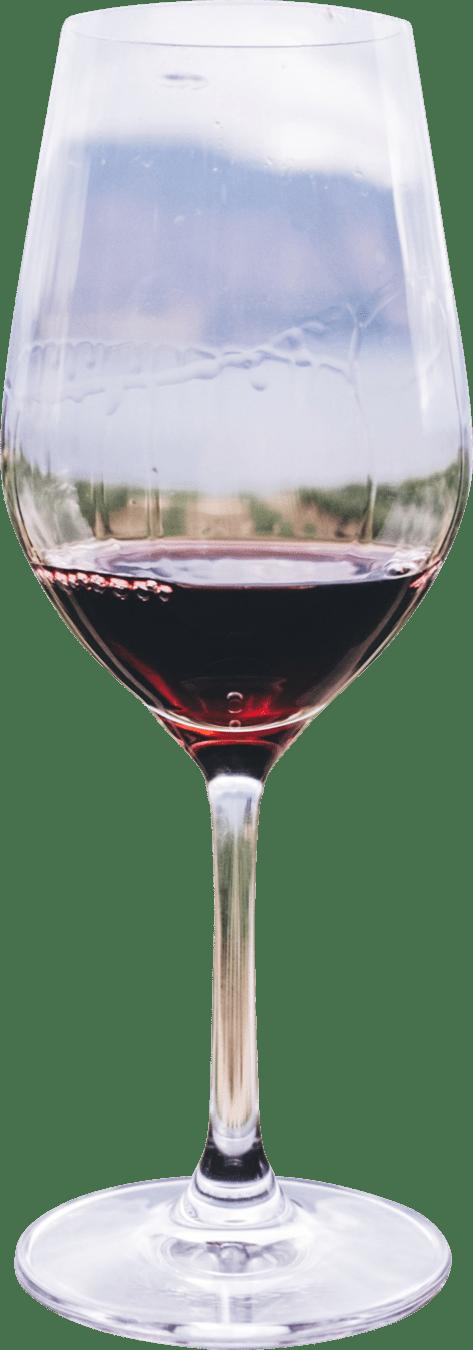 Amitage Wine Glass