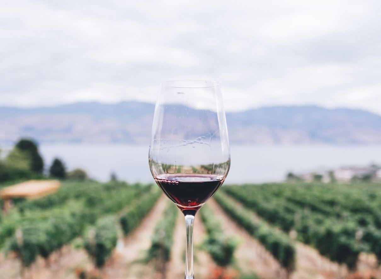 Armitage Wine
