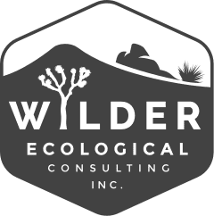 Wilder Ecological