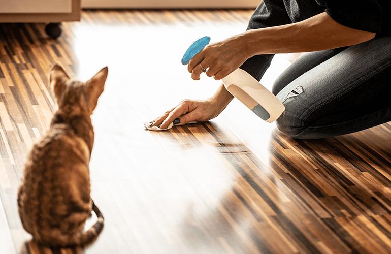 mulher limpando xixi de gato