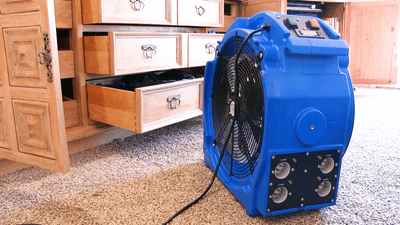 Bedbug heater showing power cord placement