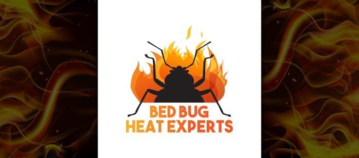 Should You Do your Own Bed Bug Treatments?