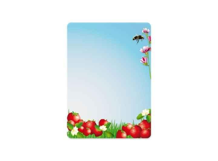SUM009 - Summer Seasons 9 p/s Label
