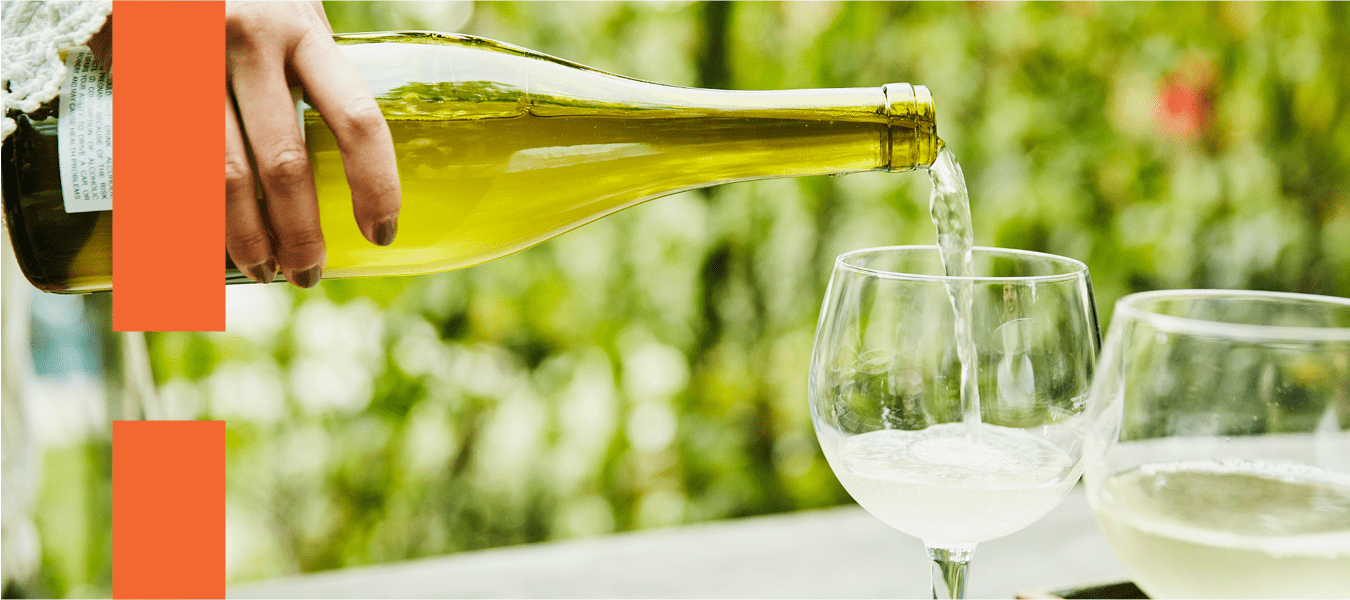 Harmonização de vinhos: um guia simples para você não ter dúvidas na hora das compras