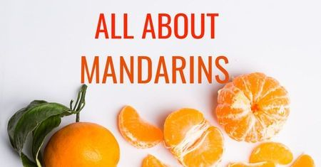 All About Mandarins-Four Winds Growing