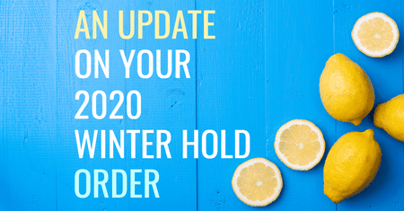 An Update on your 2020 Winter Hold Order-Four Winds Growing