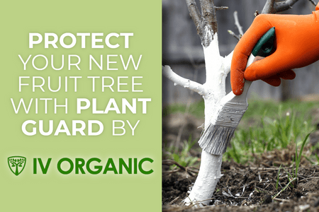 Protect Your Trees With IV ORGANIC Plant Guard-Four Winds Growing