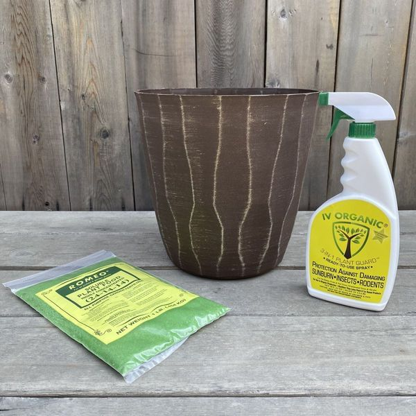 Saturn Planter Tree Care Box