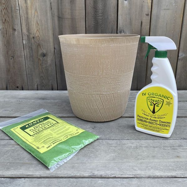Thatched Planter Tree Care Box
