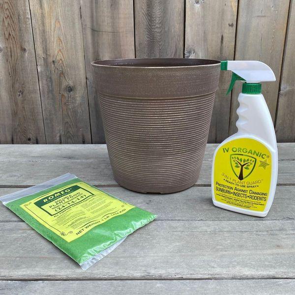 Helix Planter Tree Care Box