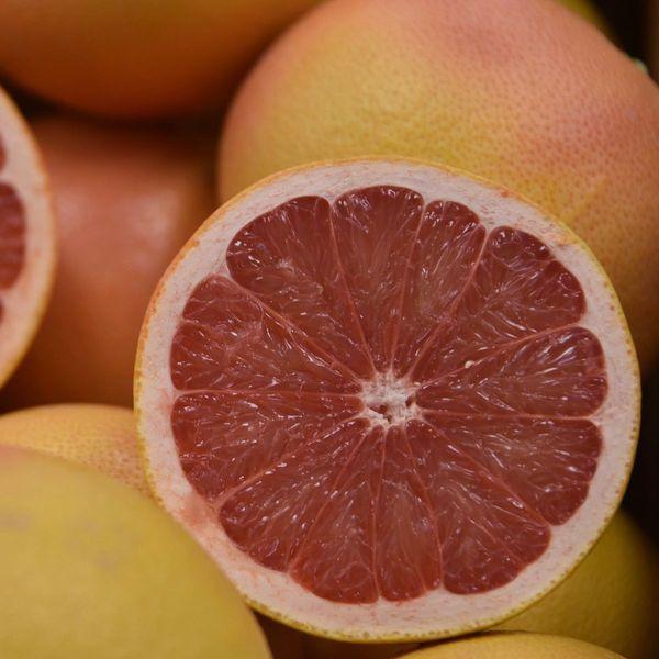 Star Ruby Semi-Dwarf Grapefruit Tree