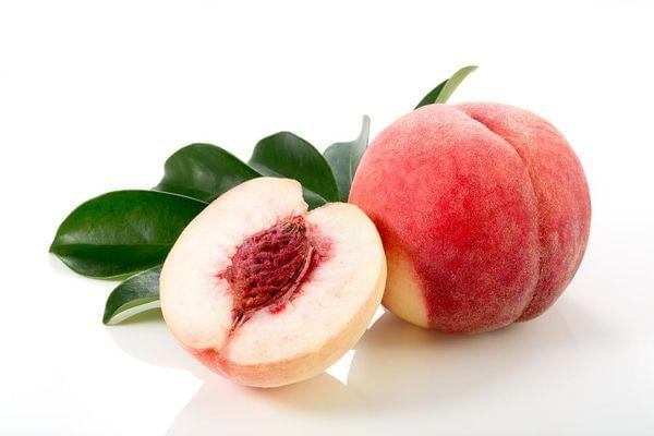 Babcock White Peach Tree