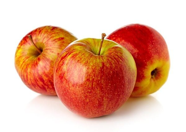 Anna Apple Tree