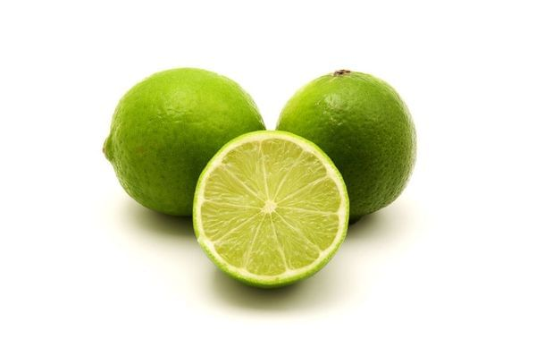 Bearss Seedless (Tahitian/Persian) Semi-Dwarf Lime Tree