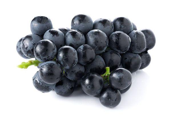 Cabernet Wine Grape Vine