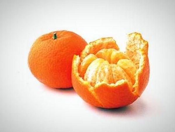 Clementine/ Algerian Semi-Dwarf Mandarin Tree