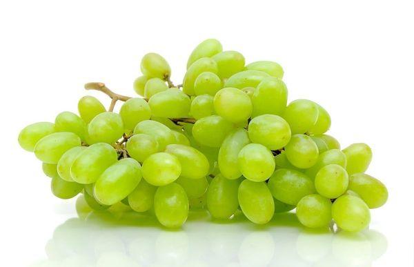 Interlaken Grape Vine