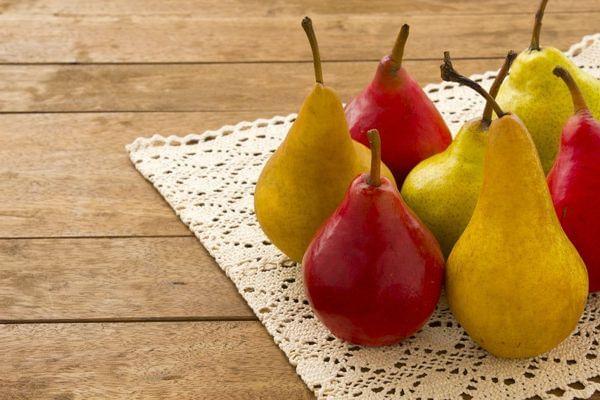 Pear- Multi Budded Fruit Tree