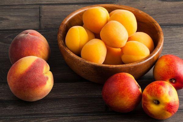 Fruit Salad- Multi Budded Fruit Tree