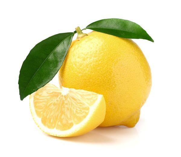 Pomona Sweet Semi-Dwarf Lemon Tree