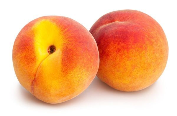 Redhaven Yellow Peach Tree