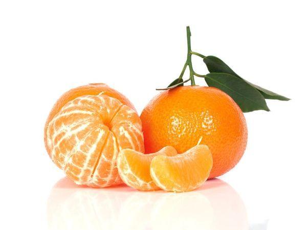 Shasta Gold Semi-Dwarf Mandarin Tree (Patented)