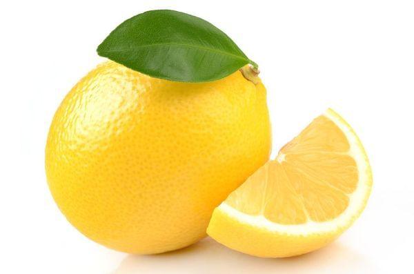New Zealand Lemonade Semi-Dwarf Lemon Tree