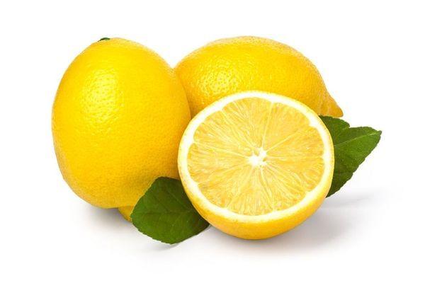 Genoa/ Genova Semi-Dwarf Lemon Tree