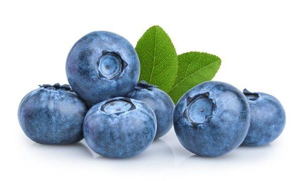 Star Blueberry Bush