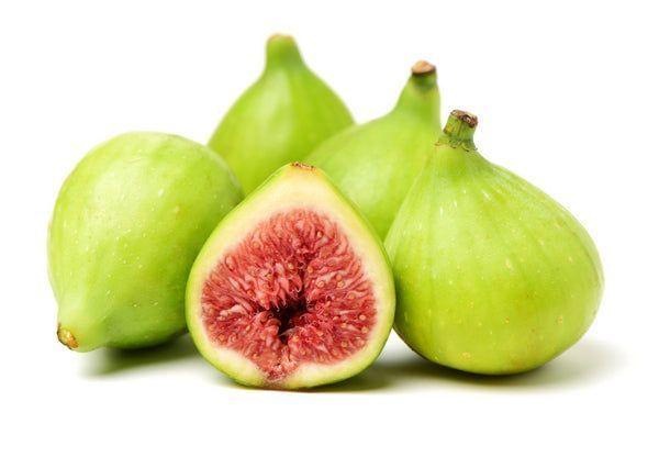Excel Fig Tree Tree
