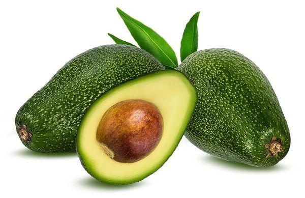 Pinkerton Avocado Tree (PRE-ORDER)