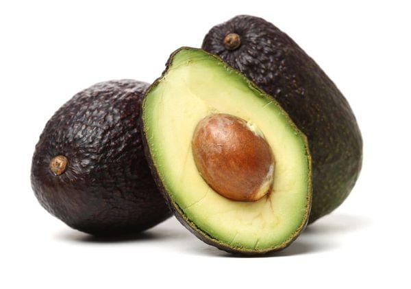 Carmen Hass Avocado Tree