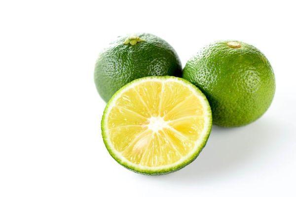 Sudachi Semi-Dwarf Lime/Sour Mandarin Tree