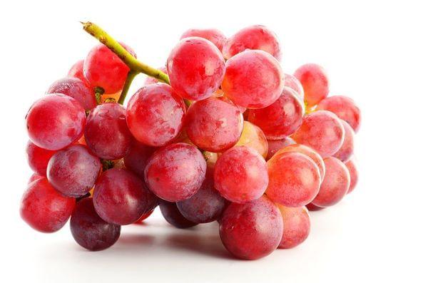 Suffolk Red Seedless Grape Vine