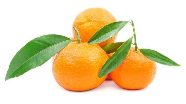 Tahoe Gold Semi-Dwarf Mandarin Tree (Patented)