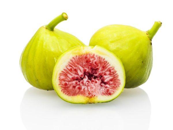 White Genoa Fig Tree