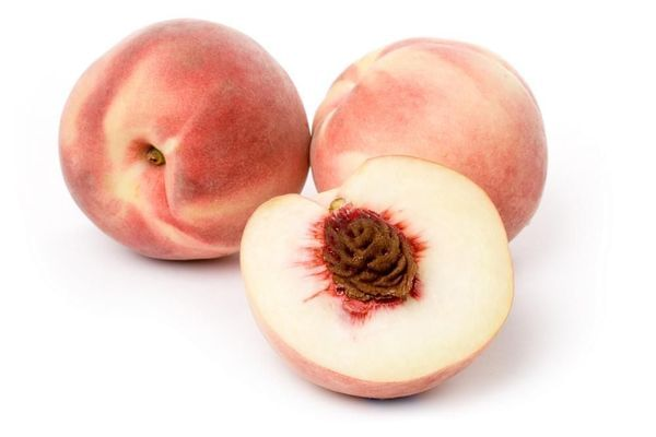 White Lady Peach Tree