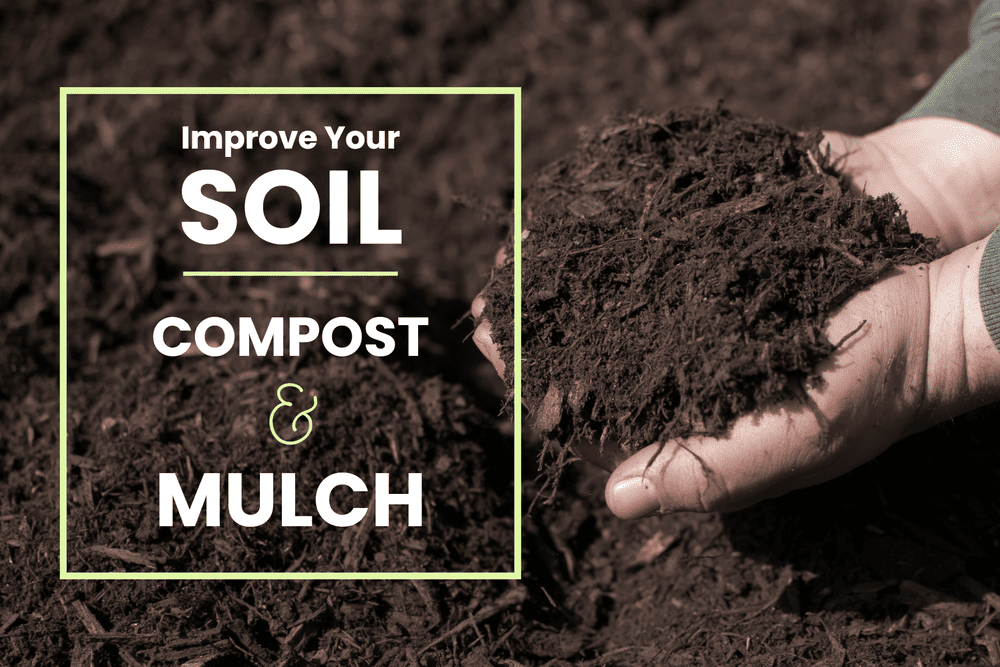 Improve Your Soil - Compost & Mulch! Featured