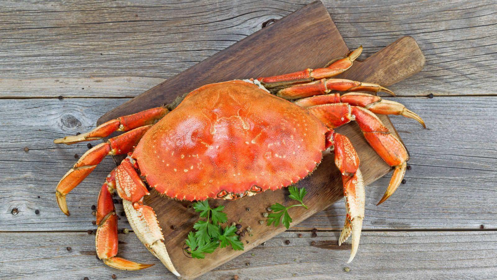 Apesar da carcaça dura, a carne do caranguejo é uma das mais macias