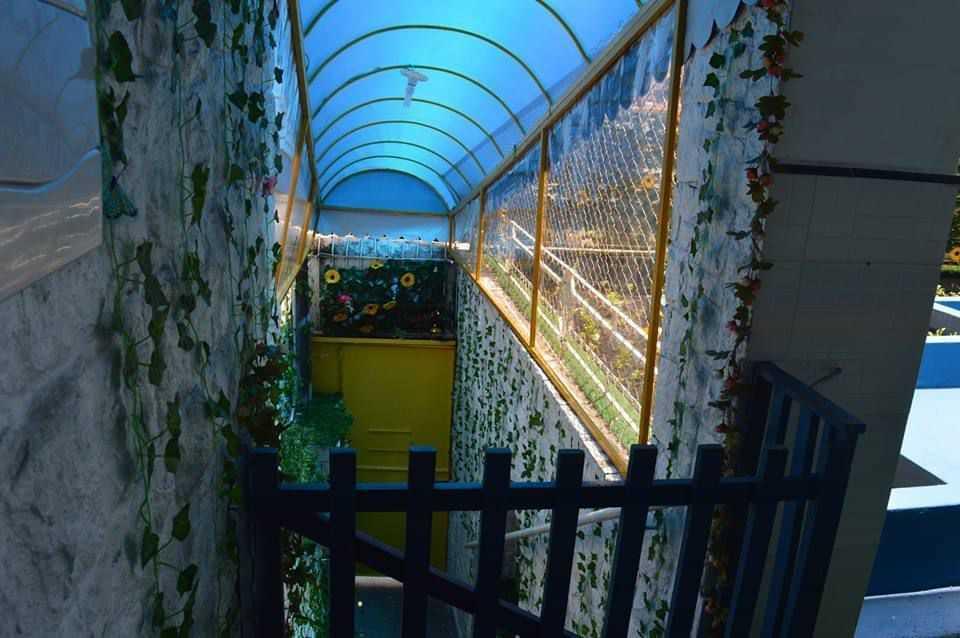 Colégio Jardim da Glória - foto 16