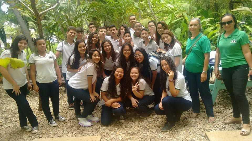 Colégio Torres Vasconcelos - foto 28