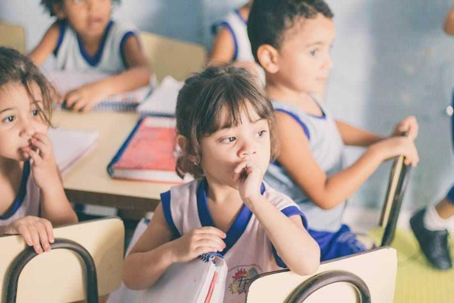 Centro Educacional Ferreira Figueiredo - foto 6