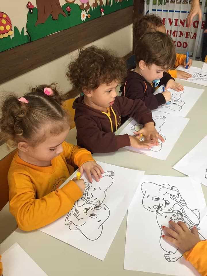 Centro de Educação Infantil Leãozinho de Judá - foto 42