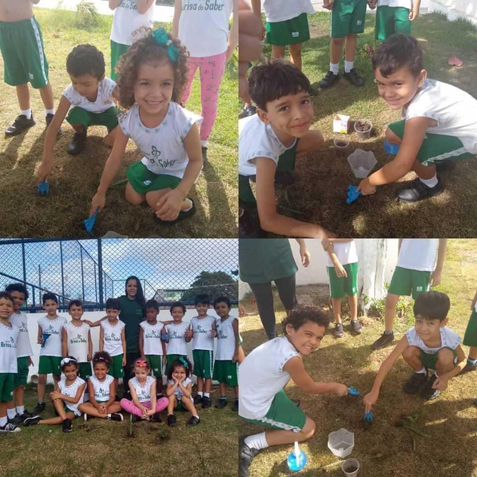 Escola Brisa do Saber - foto 10