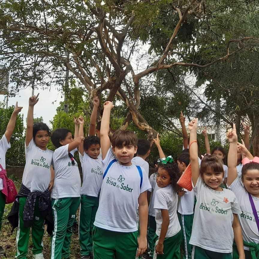 Escola Brisa do Saber - foto 13