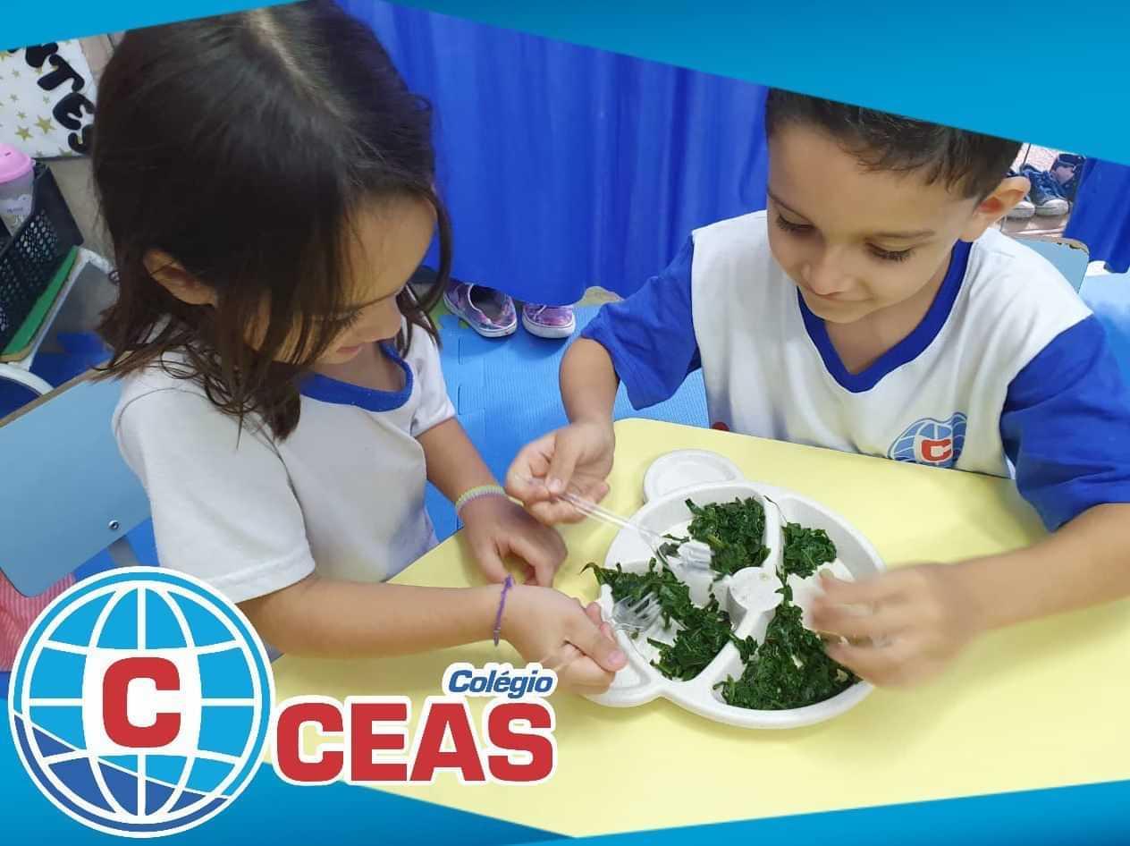 Colégio CEAS – Centro Educacional Alegria do Saber - foto 1