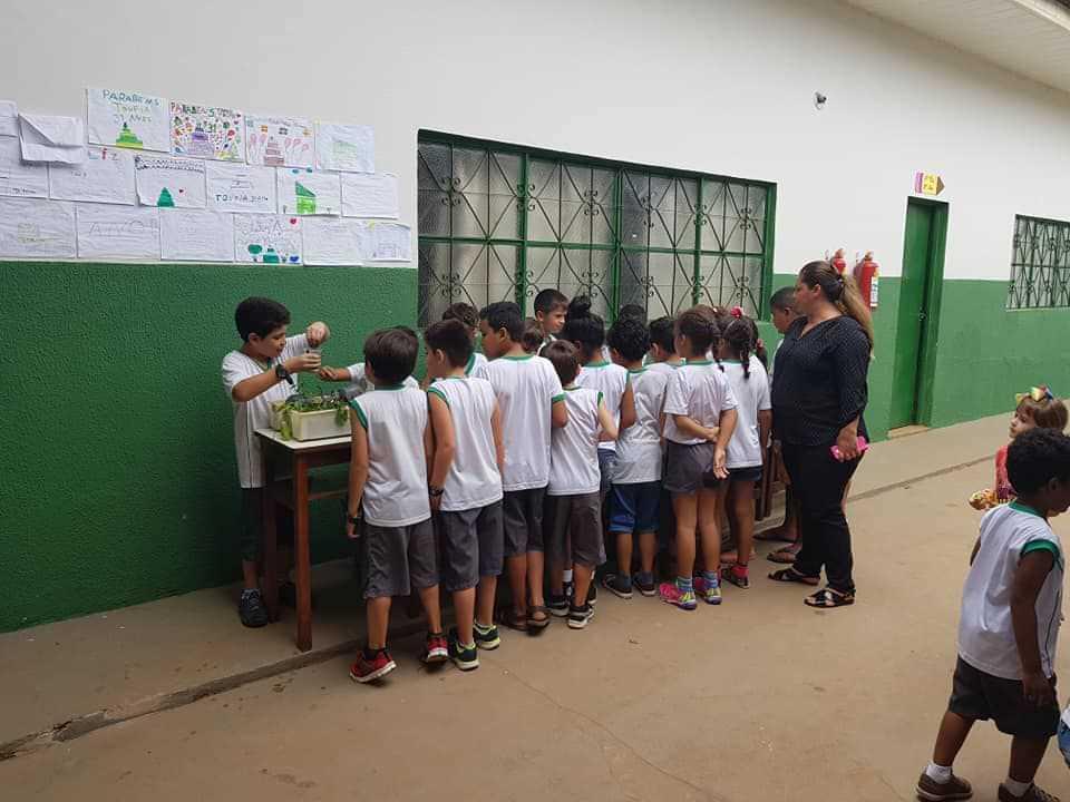 Escola Toufia Tanous Bouchabki - foto 6