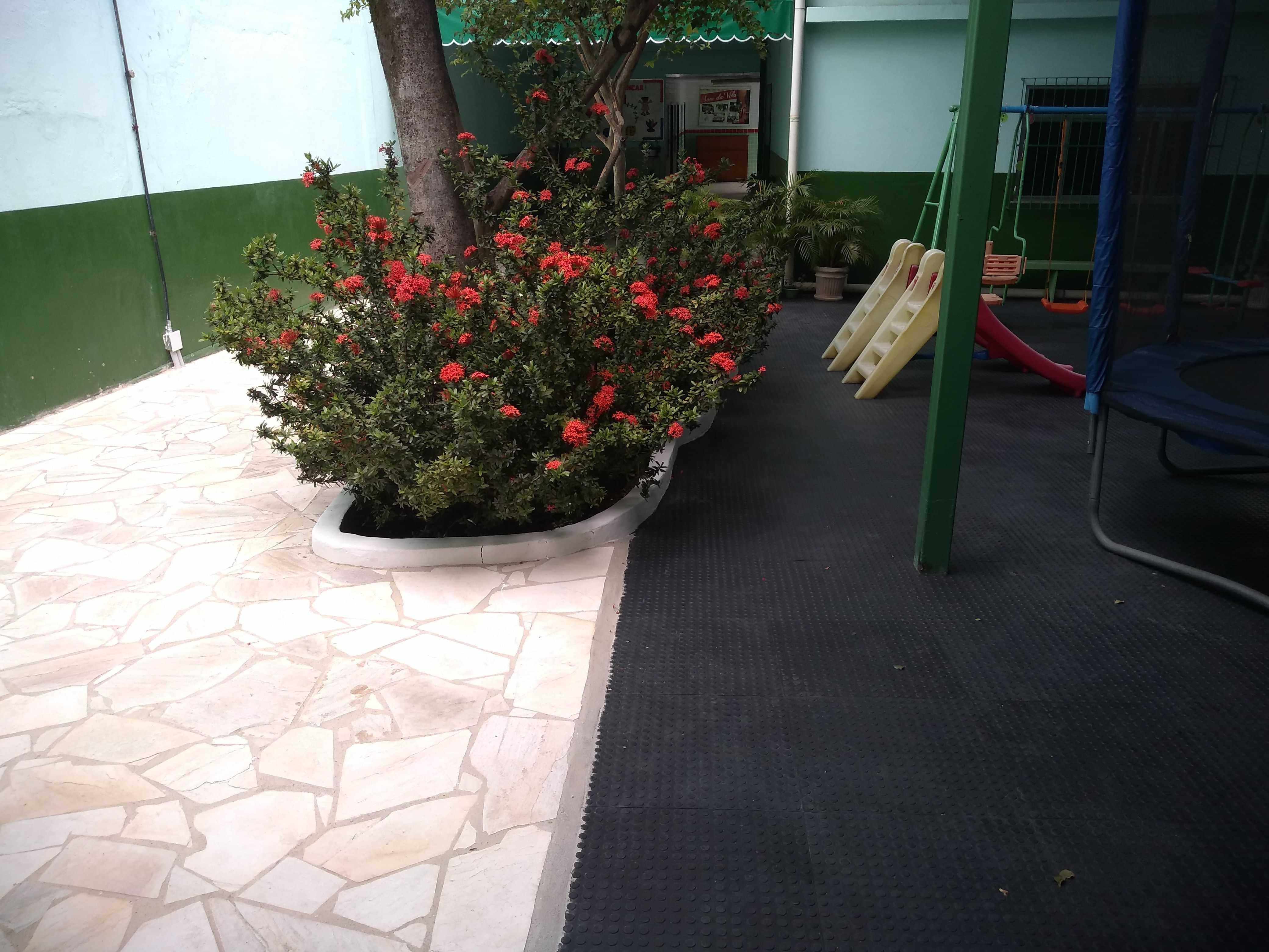 Assoc Educ Francisca Nubiana Da Silva - foto 46